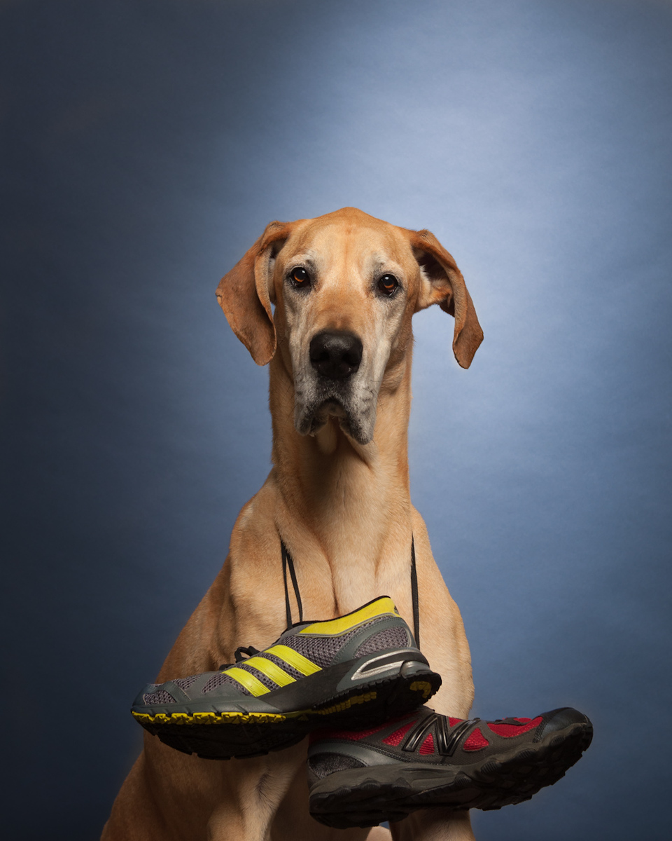 Wally Shoe Drive